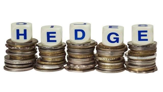 Hedge, Hedging là gì? Chiến lược sử dụng hedging lợi hại nhất 2021