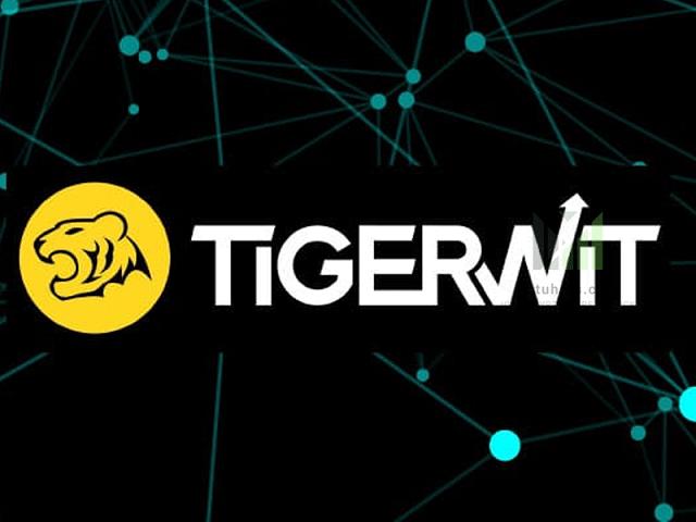 Sàn giao dịch TegerWit là gì?