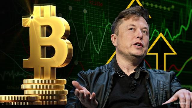 Bạn không nên đầu tư Bitcoin theo đám đông