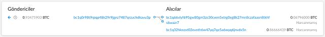 Ví dụ về giao dịch chuyển tiền diễn ra trong mạng Bitcoin. Nguồn: thenxtcoin.com