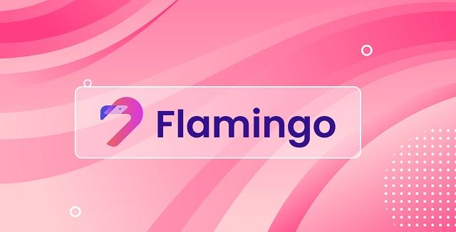 Flamingo Finance là gì? Tìm hiểu những thông tin quan trọng về dự án Flamingo