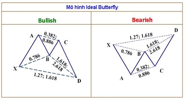 Mô hình cánh bướm thuộc dạng mô hình đảo chiều