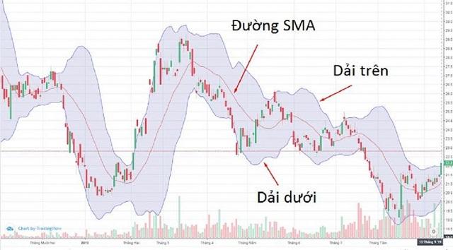 Thị trường sẽ phát triển theo đúng xu hướng