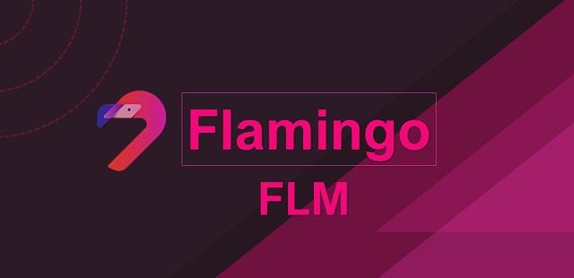 Với token FLM, người tham gia dự án Flamingo có thể sử dụng chúng để quản trị, staking và làm phần thưởng trong các giao thức