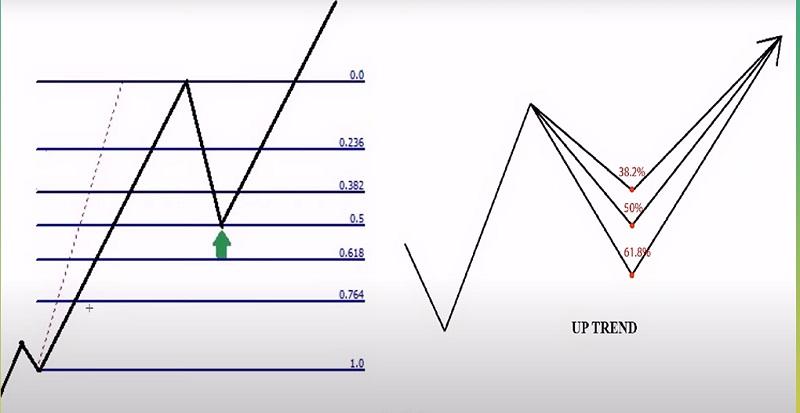 Hướng dẫn sử dụng Fibonacci thoái lui